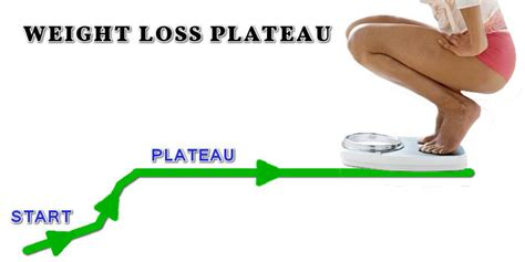 weight loss plateau picture 3