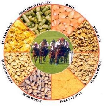 alfalfa nutrients picture 13