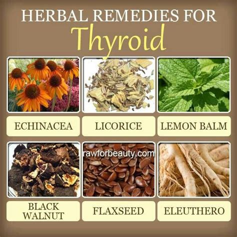 herbal remedy for thyroid picture 1