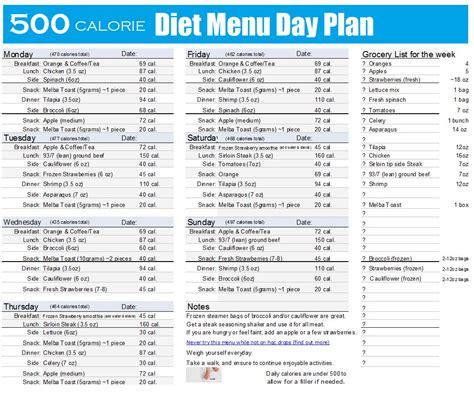 500 calorie diet picture 1