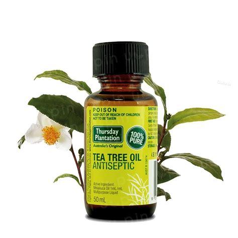 can tea trea oil dissolve cellulite? picture 5