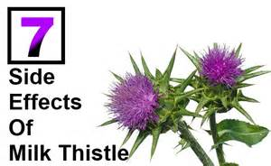 milk thistle side effects picture 1