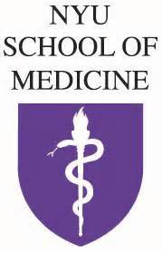 the new york school of medicine picture 3