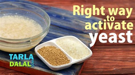 appearance of fresh yeast picture 9