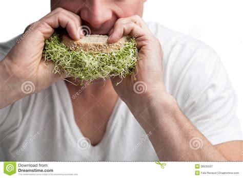 alfalfa prices picture 6