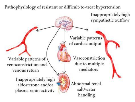 heart diagram picture 5