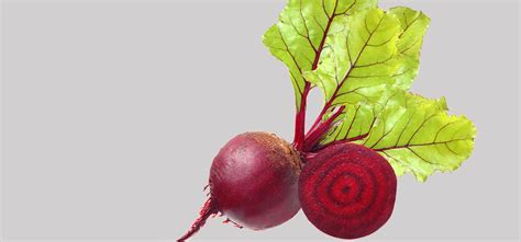 beet root picture 5