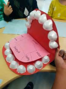 egg soda tooth science fair picture 10