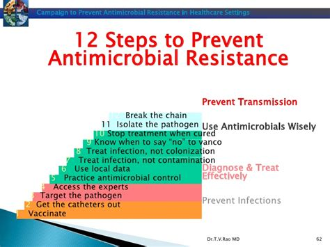 antimicrobial definition picture 1