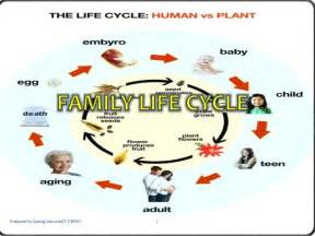 aging family life cycle pictures picture 10