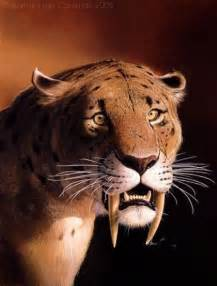 saber tooth tiger picture 9