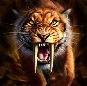 saber tooth tiger picture 13