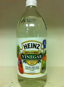 vinegar picture 9
