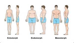 body type diet picture 10