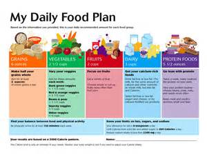 daily diet menu picture 2