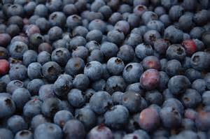 blueberry big breast inflation picture 1