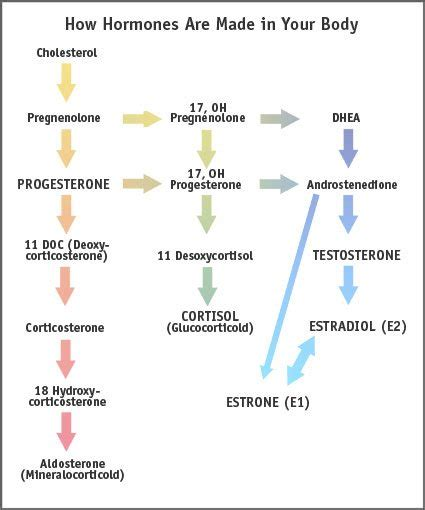 testosterone replacement therapy for osteoporosis picture 9