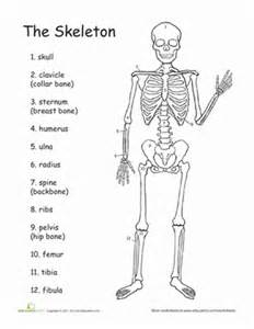 question on aging of the body picture 19