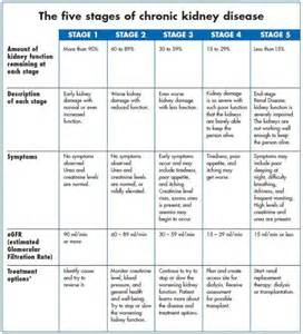 2002 dietary guidelines picture 1