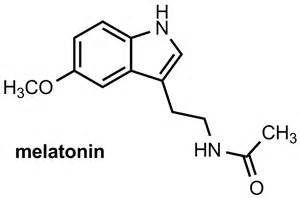 melanton is a hormone for bone lengthening picture 9
