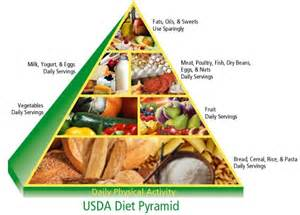 2009 dietary guidelines picture 2