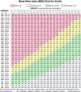bmi calculator and weight loss picture 11
