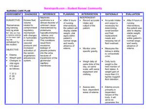 sample care plan for skin integrity picture 2