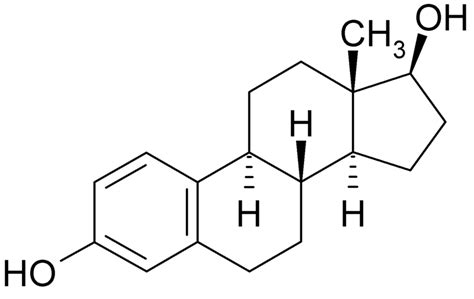 testosterone and estradiol are nucleic acids picture 21