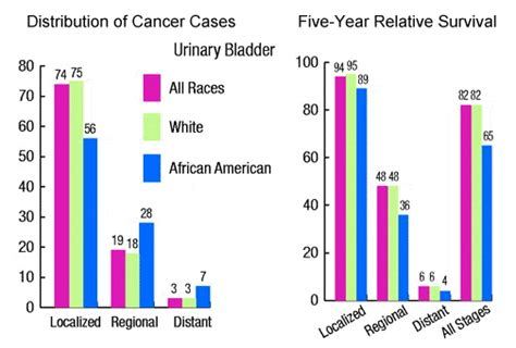 bladder cancer is what percent of all cancers picture 10