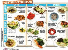 3 day diet picture 10