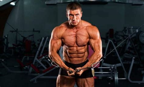free tips on how to gain muscle and picture 1