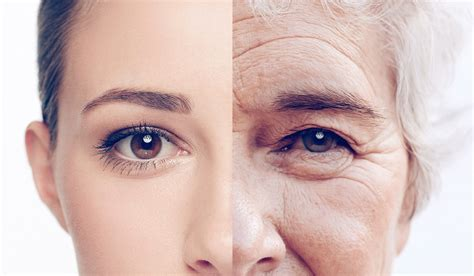ageing picture 6