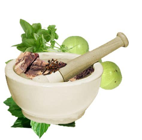 natural herbal medicines picture 10