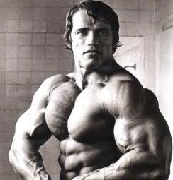 arnolds muscle pictures picture 19