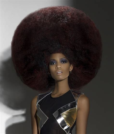 afro hair style picture 9