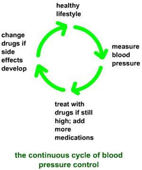 testosterone cycle blood pressure picture 14