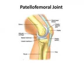 pain in bones picture 7