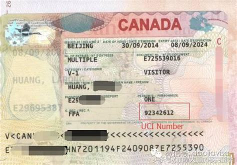 where can i buy nevexen in canada picture 11