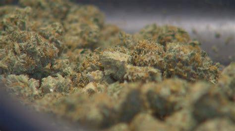 what will happen if my is around marijuana picture 6