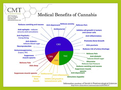 diabetic herbs picture 17