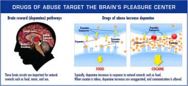 natural opiate high without opiates picture 7