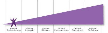 cultural competence continuum and aging picture 18