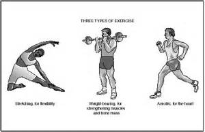 what is the definition of muscle strength picture 2