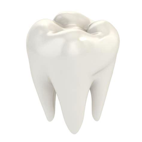bone loss in teeth picture 10