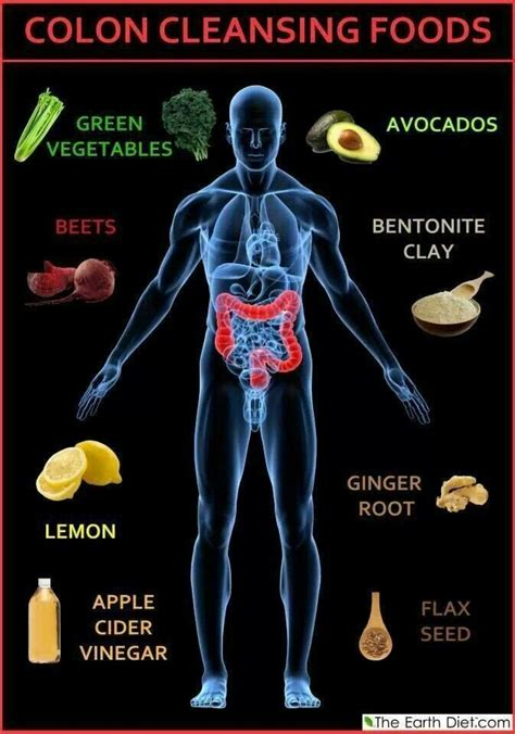 colon cleansing foods picture 9