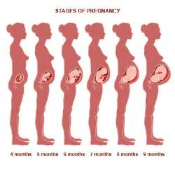 1month pregnancy girane k medicine picture 22