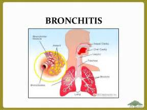 bacterial bronchitis picture 3