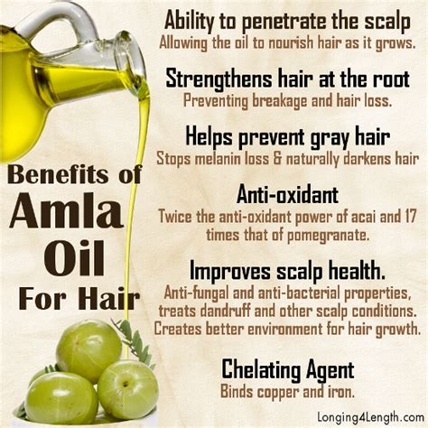 amla extract on thyroid health picture 14