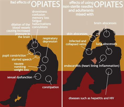 plants with opiate like effects picture 1