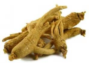ginseng in decreasing libido pubmed picture 5